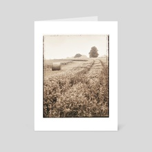Harvest - Art Card by Adrian Brockwell