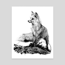 Ink Fox - Canvas by Bridgette McGee