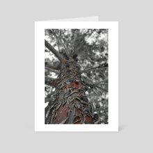 Tree - Art Card by Mark Paddle