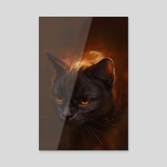 Black Cat by Mari-Liis Kirsimägi