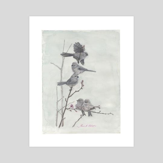 Bushtits on Flowering Plum by Terri Nelson