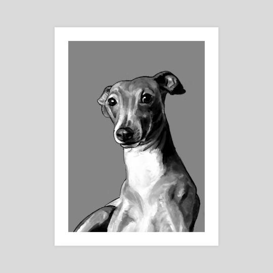 Graham, the Greyhound by John Poh