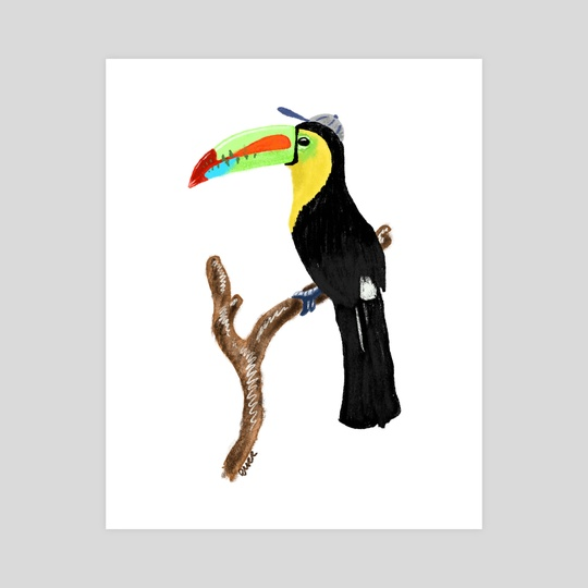 Toucan in a Baseball Cap by Kevin Durr