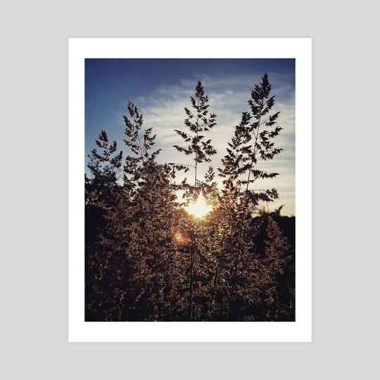 Sunset Silhouette by Ashley Gedz