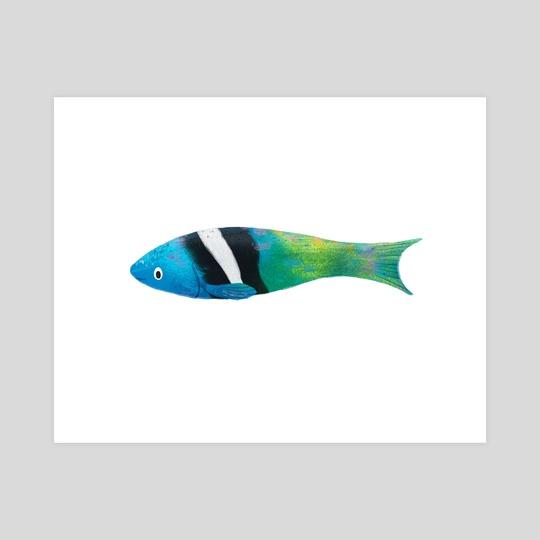 Bluehead Wrasse Fish by Taryn Johnson