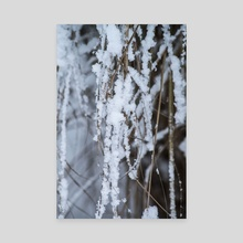 Beautiful winter - Canvas by The Pandaas