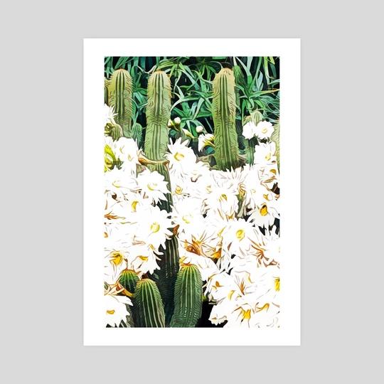 Cactus & Bloom by 83 Oranges