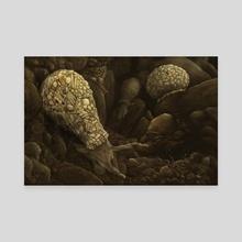 Difflugia - Canvas by Katelyn Solbakk
