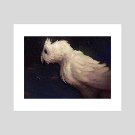 White Owl by Tyson Murphy