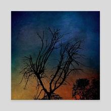 A Conscious Sky - Canvas by Paul Raven