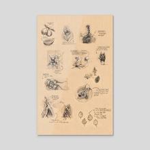 Plant Study Sheet - Acrylic by Grace Fong