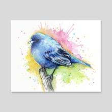 Indigo Bunting Watercolor - Acrylic by Olga Shvartsur