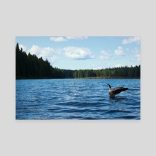 Goose and Lake - Canvas by Sara Trejo