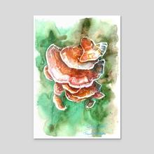 Turkey Tail Fungi - Acrylic by Tracie MacVean