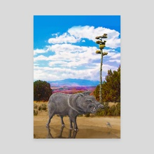 Gila Javelina - Canvas by Russell Thornton