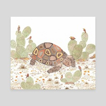 Desert Tortoise  - Canvas by Cortney Benvenuto