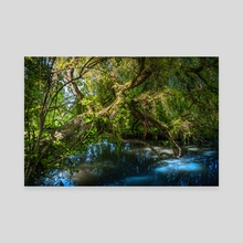 A R B O R O U S - Canvas by Eclectic Image