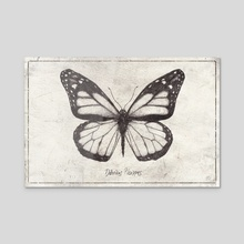 Danaus Plexippus - Acrylic by Mike Koubou
