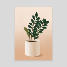 Zamioculcas plant - Canvas by Dzhenyo Dzhenev