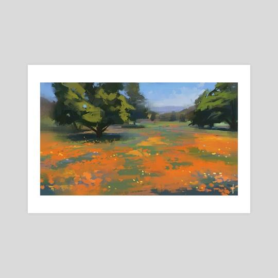 Poppies by Allison Gloe