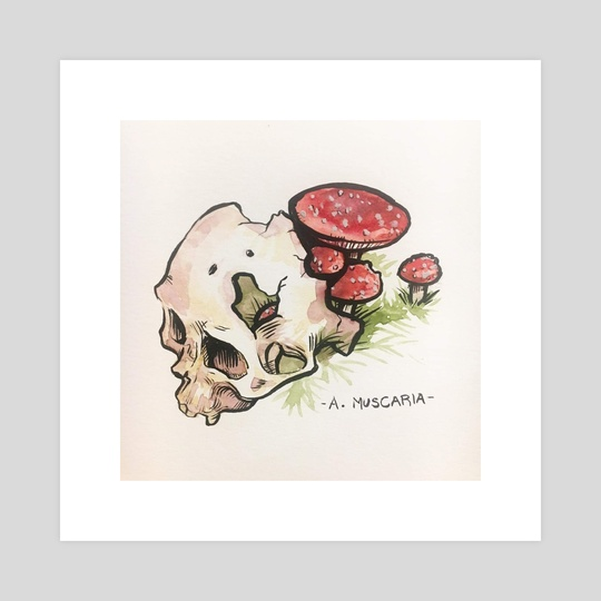 Mushroom Skull - A. Muscaria by NYWN [ˈna͜i.ˌwɪn]