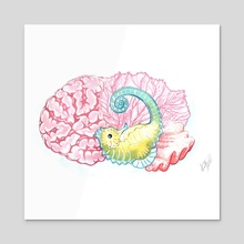 Hippocampus - Acrylic by Kat Powell