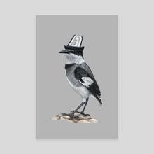 White-tailed Shrike - Canvas by Mikhail Vedernikov