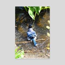 Bath Time in Blue (Blue Jay #2) - Canvas by Tim Ellis
