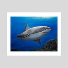 Great White Shark - Art Print by Ronald Zeman