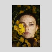Dandelion Girl - Canvas by Alexandra Bochkareva