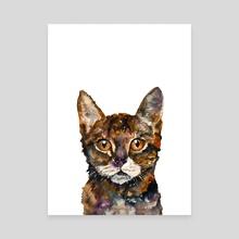CAT#8 - Canvas by Rafał Wnęk