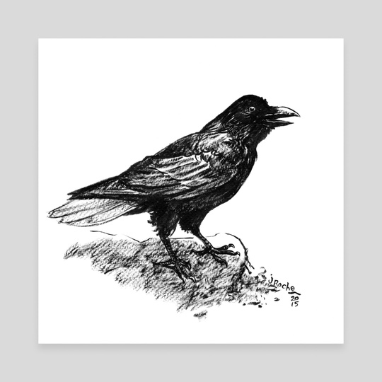 Crow by Jackie Roche