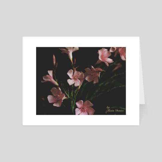 Oleander by Tonia Denice
