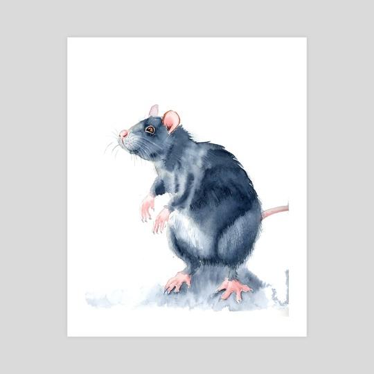 Rat by Olga Shefranov (PaintisPassion)