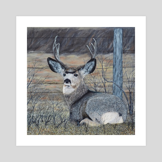 Mule Deer in the Brush by Brian Sloan