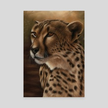 Cheetah - Canvas by Richard Macwee