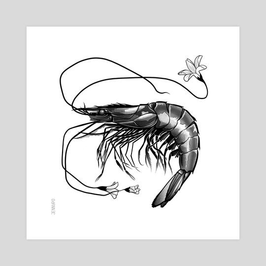 shrimp by jenny pokryvailo