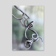 Photo - Grape Vine - Acrylic by Jocelyn Design Studio
