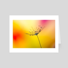 Dandelion - Art Card by Filip Șerban