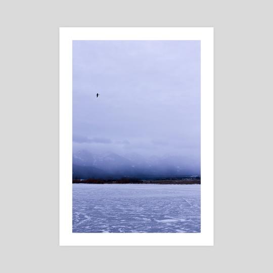 Frozen Flathead Lake by Michelle Coffeen