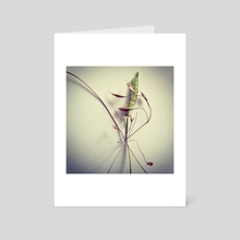 Herbarium IV - Art Card by Sasha Mirov