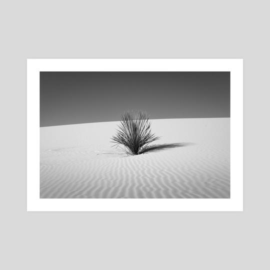 Sand Rhythm by Beau Devereaux