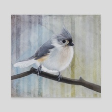 Tufted Titmouse  - Canvas by Tom Schmitt
