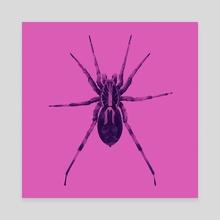Wolf Spider - Canvas by Dora Litterell