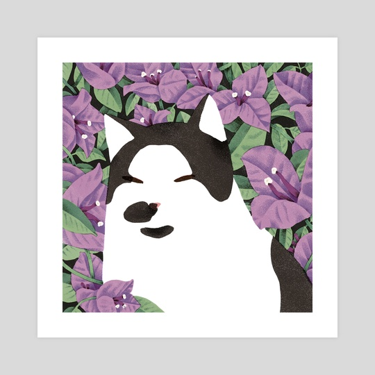 Floyd with Bougainvillea by Jeannie Phan