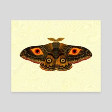 Mothman is out there - Canvas by Cy Nguyen