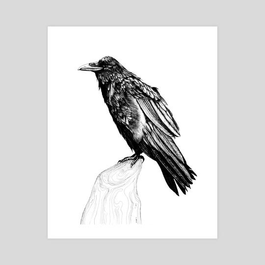 Raven by Anna Szostek