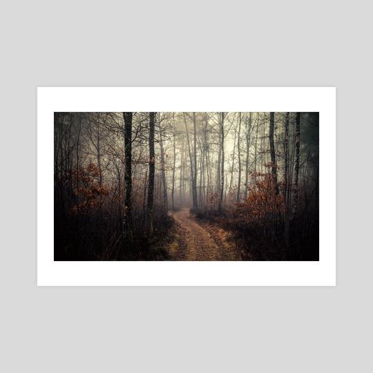 Foggy Forest by Just_Eirik