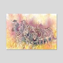 Zebras - Acrylic by Kate W