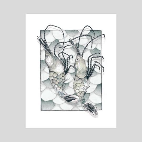 Shrimp by Sara Blake